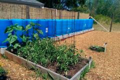 Church Garden Project - Windsor Community Church