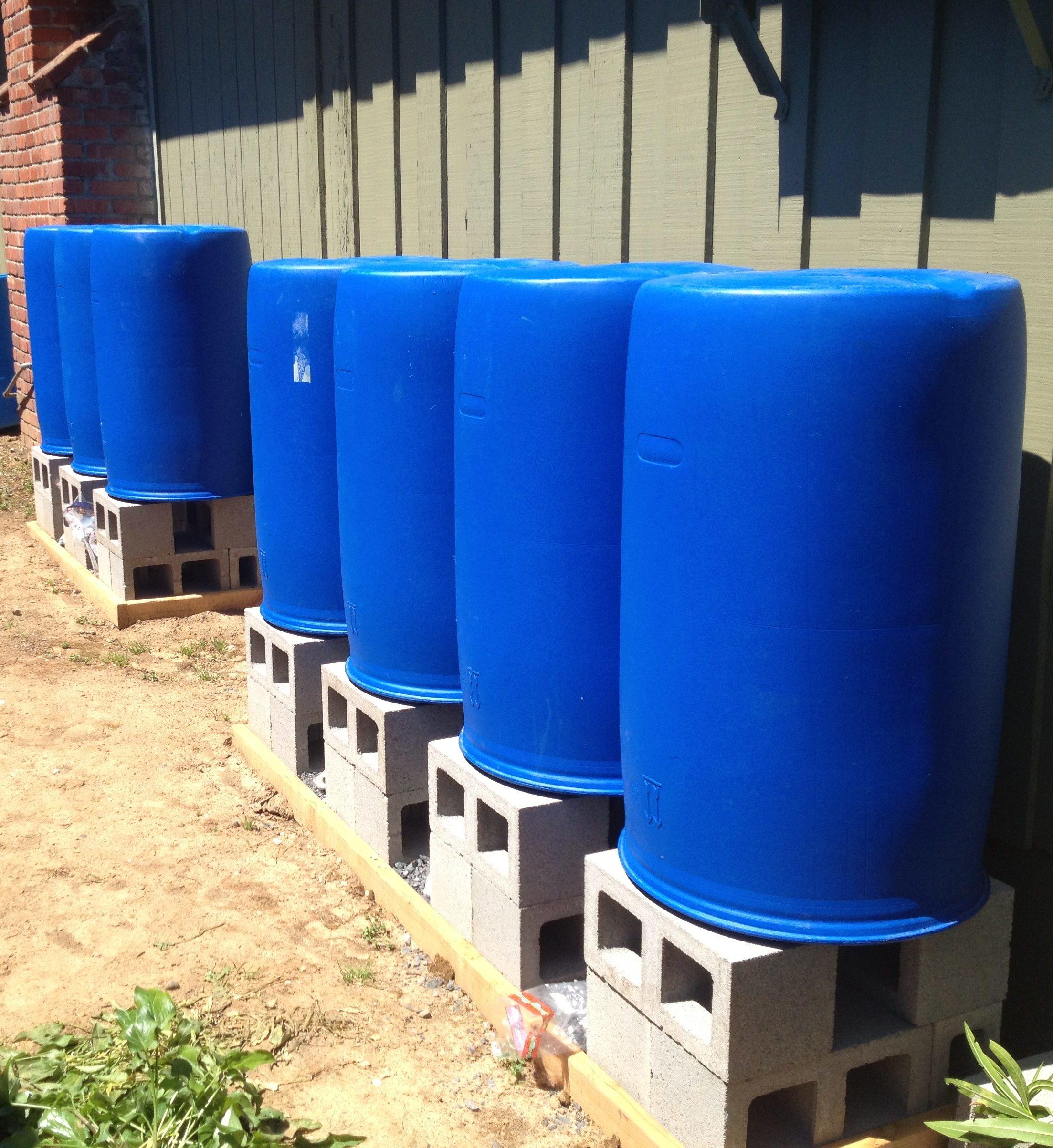 barrel rainwater storage
