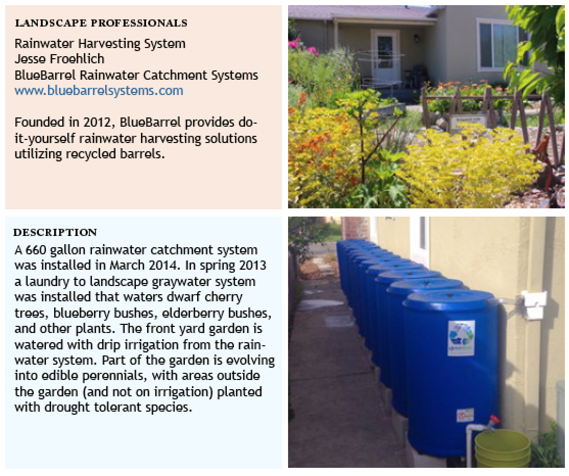 greywater irrigation effect