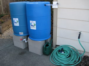 The Colorado special: BlueBarrel's 2-Barrel system - exactly 110 gallons of fully accessible water storage.