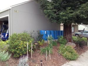 Rain Barrels Gravity Feed Drip Irrigation