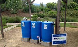 Blue Barrel Rain Water Collection System Demo