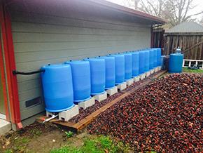 Dean's BlueBarrel Rainwater Catchment System