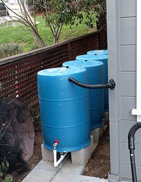 Scott's BlueBarrel Rainwater Catchment System