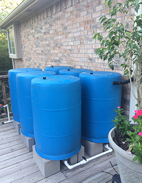 Kelly's BlueBarrel Rainwater Catchment System