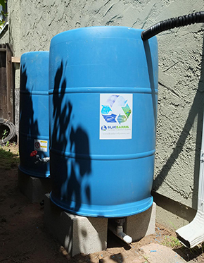 Pieters BlueBarrel Rainwater Catchment System