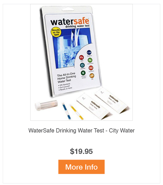 WaterSafe Drinking Water Test - City Water