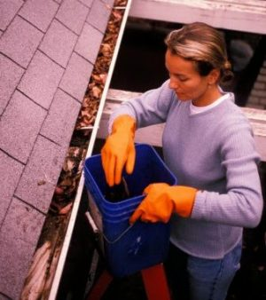 Woman Cleaning Gutter