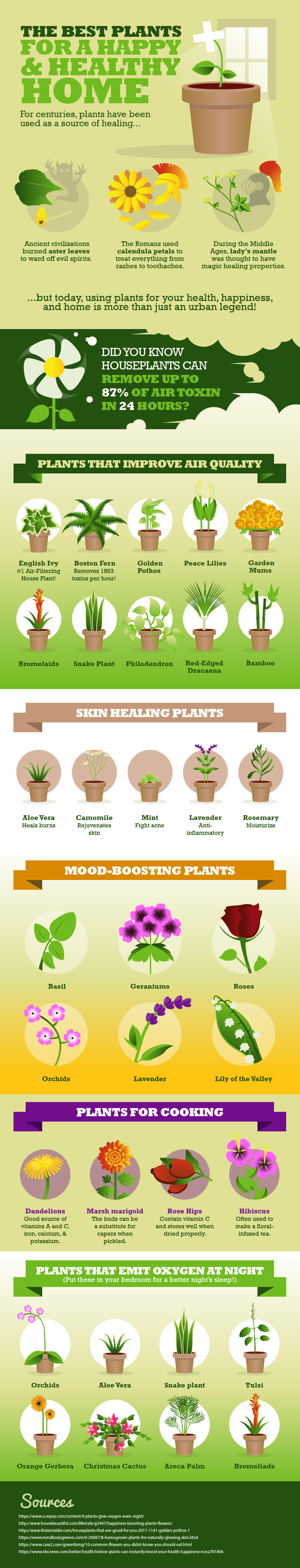 Benefits Of Houseplants And How To Keep Them Healthy,Budget Friendly Home Bar Ideas On A Budget