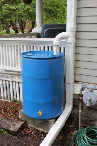 Single Rain Barrel