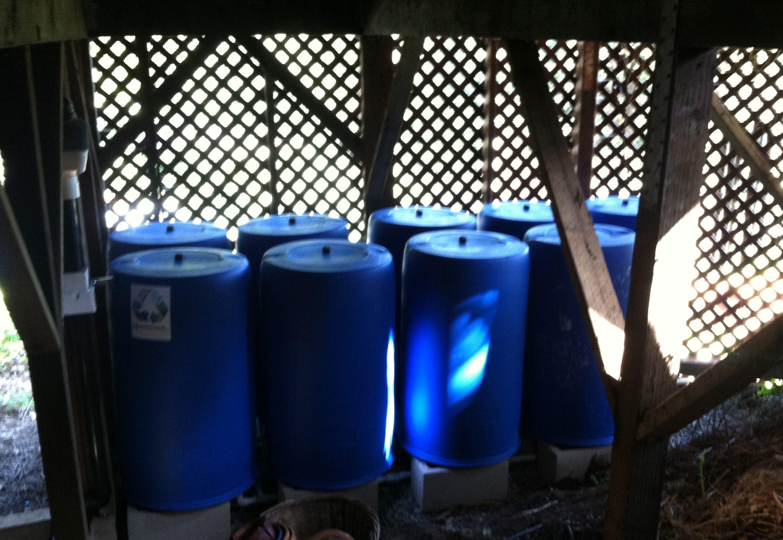 Rain barrels under deck