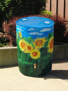 sunflower painted rainbarrel
