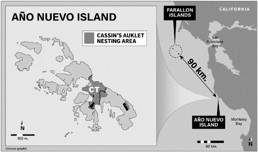 map of año nuevo island